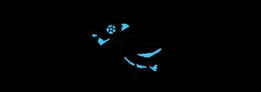 early-bird-lazio-icons